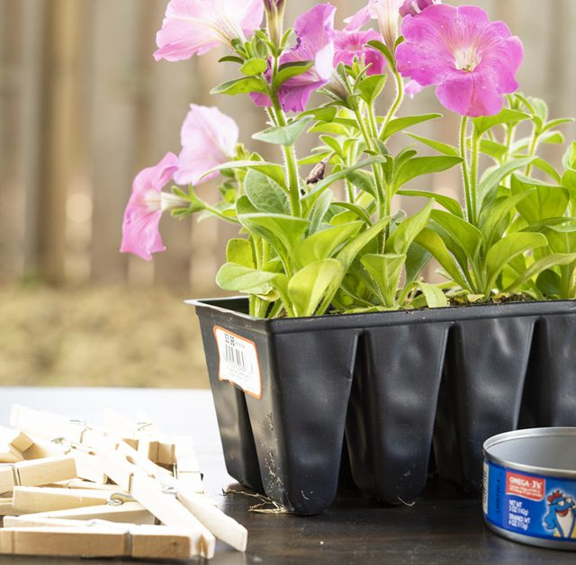 DIY Flower Pot Design