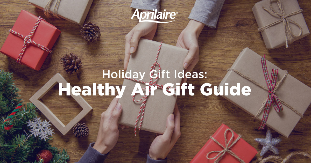 holiday-gift-ideas-for-health-air